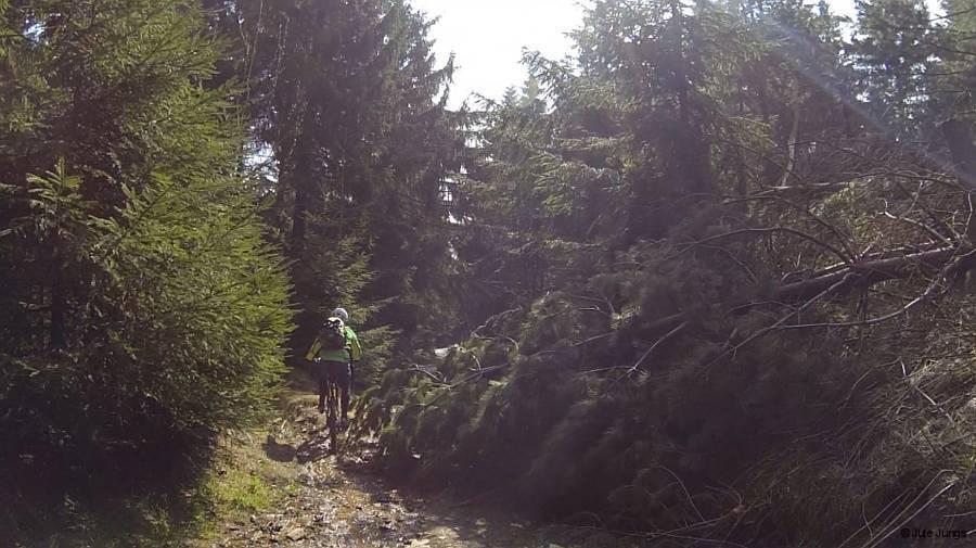 Weg hinunter vom Fichtelberg